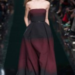 Runway Report: Elie Saab Fall/Winter 2014 Paris Fashion Week